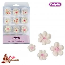 Kwiatki Mix Kwiatków i rozmiarów 36 szt Culpitt