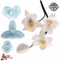 Wycinarka - Orchidea Singapurska Mała JEM