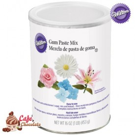 Wilton Gum Pase Mix 450g