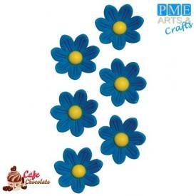 Stokrotki Niebieskie 12 szt PME