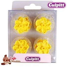Narcyzy Żółte 12 szt Culpitt