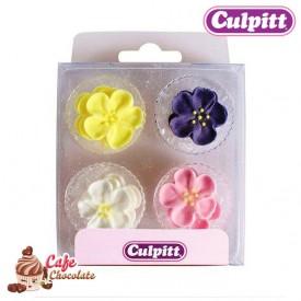 Dzika Róża Mix Kolorów 12 szt Culpitt